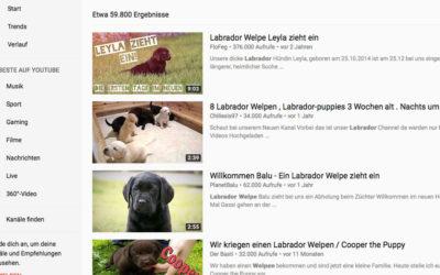 3: Youtube-Sehnsucht