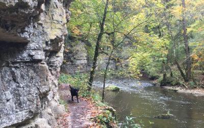 Auf dem Schluchtensteig, Teil 1: Achdorf – Schattenmühle