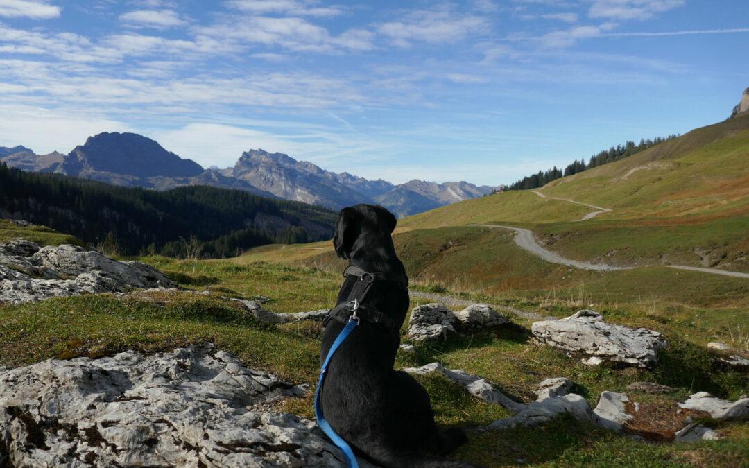 Wandern über den Pragelpass, Teil 2: Richisau- Muotathal